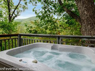 Cozy 2 bedroom Cabin in Gatlinburg - Gatlinburg vacation rentals