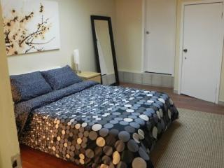 Fully Furnished Basement Apartment for rent - Toronto vacation rentals