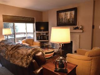 Cozy 2 bedroom Condo in Aspen - Aspen vacation rentals