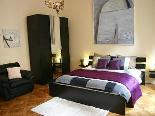 Central, Sunny Apt. w/ character, view + free wifi - Prague vacation rentals