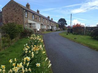 Old Stone Cottage By Dunstanburgh Castle - Dunstan Village vacation rentals