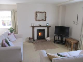 Apple Tree Cottage. Glorious Panoramic Views - Lampeter vacation rentals
