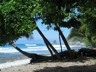Cabo Matapalo Beach Camping - (TENT included) - Cabo Matapalo vacation rentals