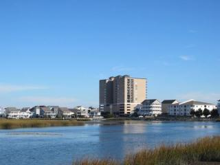 Beach Front Amenities - 2nd Row with Great View - North Myrtle Beach vacation rentals