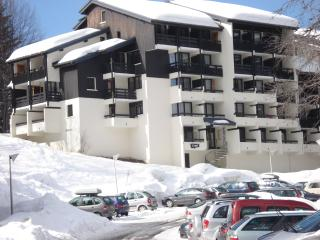 Apartment Genepi - Les Carroz-d'Araches vacation rentals