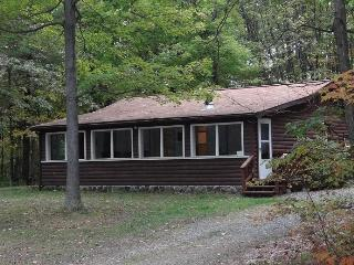 Comfortable Cabin with Deck and Outdoor Dining Area - Bradford vacation rentals