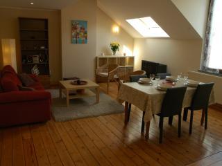 Cozy 2 bedroom Condo in Schaerbeek - Schaerbeek vacation rentals