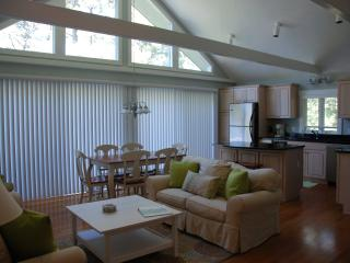 Beautiful Katama Edgartown 4 BR Retreat Central AC - Edgartown vacation rentals