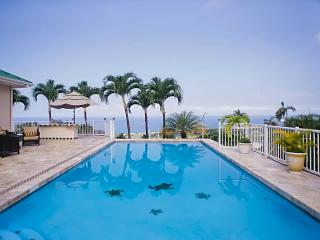 Sunset Paradise 180 ocean view Pool/Spa for 14 ppl - Kailua-Kona vacation rentals