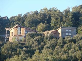 Gîte écologique prés de Carcassonne (Aude) - Villarzel-du-Razes vacation rentals