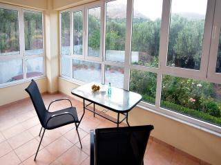 Beautiful House with A/C and Satellite Or Cable TV in Kato Zakros - Kato Zakros vacation rentals