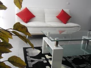 Apartments In Valencia. Un dormitorio +sofa cama - Valencia vacation rentals