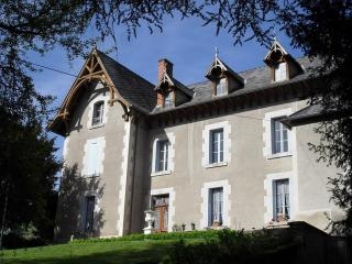 Chateau Arfeuilles with private swimming pool - Allier Department vacation rentals