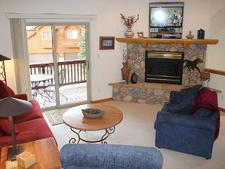 LR66- 2 Bedroom 3 Level Luxury Townhome With Garage And Common Hot Tub Access - Dillon vacation rentals