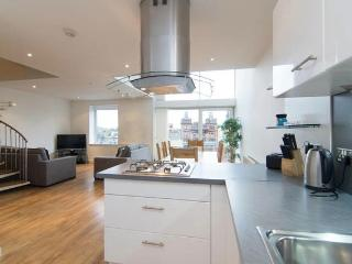 AWARD WINNING METROPOLE CONTEMPORARY APARTMENT - Glasgow vacation rentals
