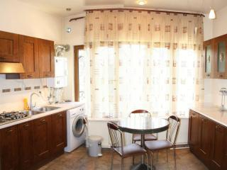Yerevan Comfort Apartment - Yerevan vacation rentals