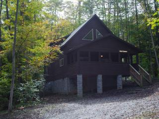 Iron Curtain at Adventures on the Gorge - Lansing vacation rentals