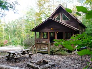 Backender at Adventures on the Gorge - Lansing vacation rentals