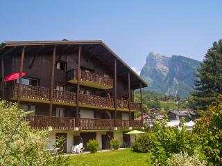 Spacious top floor apt to rent in Samoens - Samoëns vacation rentals