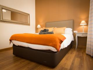 Comfort 1 bedroom apartment next Historical centre - Malaga vacation rentals