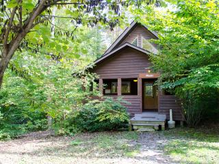 Mash at Adventures on the Gorge - Lansing vacation rentals