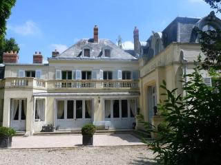 Bright 7 bedroom La Chapelle-Rablais House with Internet Access - La Chapelle-Rablais vacation rentals