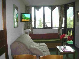 Appartement 2 pièces au coeur de Chamonix - Chamonix vacation rentals