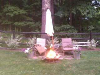 4 bedroom House with Internet Access in Mount Tremper - Mount Tremper vacation rentals