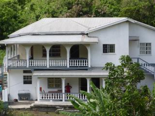 Bright 4 bedroom House in Grand Anse with Internet Access - Grand Anse vacation rentals