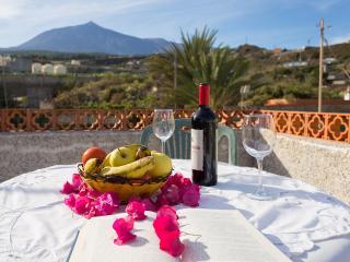Pretty apartment in rural Tenerife - Icod de los Vinos vacation rentals