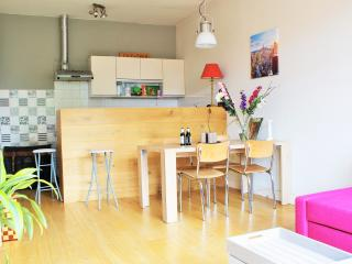Haarlem Hotspot & Huge Balcony - Haarlem vacation rentals