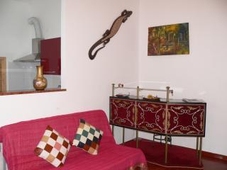 La Casa di Nika - Torino Centro - Porta nuova - Turin vacation rentals