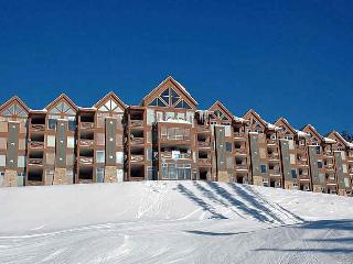 Luxury and Best Ski in/Out on the mountain - Big White vacation rentals
