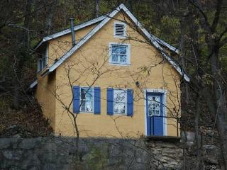 Adorable cottage outside state park - Town and Country vacation rentals