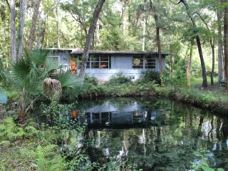 Lagoon Front Home on Homosassa River - Homosassa vacation rentals