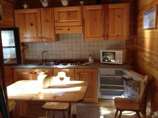 1 bedroom House with Internet Access in Borgata Sestriere - Borgata Sestriere vacation rentals