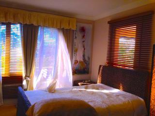OCEAN DREAM Holiday Home till 16. Beach. Budget - Palm Beach vacation rentals