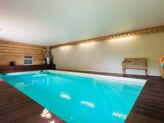 ANNECY LAFERMEDEQUINTAL piscine intérieure - Annecy vacation rentals