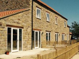Primrose Cottage located in Harwood Dale, North Yorkshire - Ravenscar vacation rentals