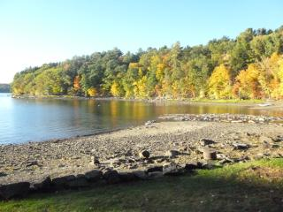 Georgeous Gumble Cabin - Lake Wallenpaupack - Greentown vacation rentals