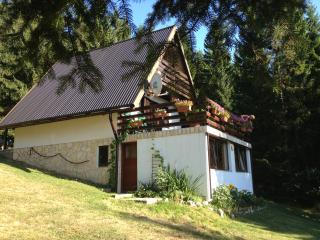 Cozy 2 bedroom Vacation Rental in Ravna Gora - Ravna Gora vacation rentals
