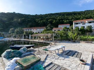 Adorable apt with sea view, Mljet.. - Govedari vacation rentals