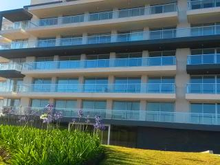 LUXUS APARTMENTS FRONT BEACH (3 UNITS) - Punta del Este vacation rentals