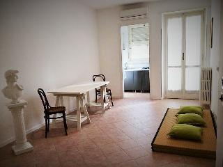 Bellissimo appartamento stile zen - Moncalieri vacation rentals
