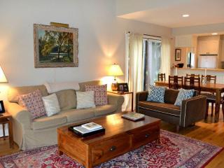 Beautiful 2 bedroom Wilson Apartment with Deck - Wilson vacation rentals