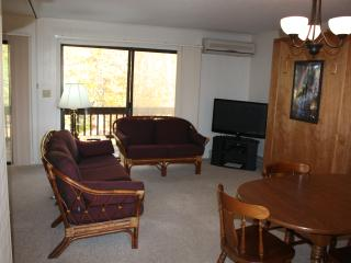Beech Mountain Condo Sleeps 5; Walk to Ski Beech - Beech Mountain vacation rentals
