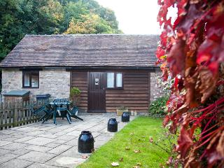 Perfect Barn with Internet Access and Outdoor Dining Area - Cleobury Mortimer vacation rentals