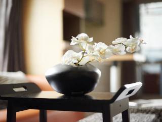 "S Studio-""Delight""(喜樂) Zen&Peace - Taipei vacation rentals"
