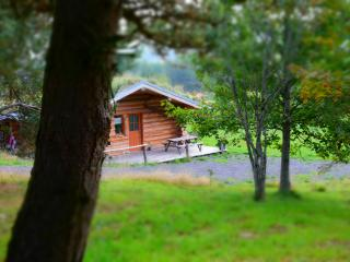 Nice Cabin with Television and Grill - Fay-sur-Lignon vacation rentals
