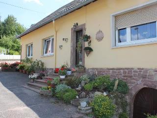 Gîte du cerf, grand confort de 130 m2 avec - Birkenwald vacation rentals